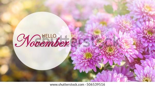 Hello November Wallpaper Wonderful Autumn Background
