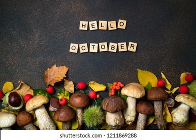 Hello October card. Mushrooms Boletus, chestnuts, wild berries, rowan and Autumn leaves background. Autumn composition. Fall season mood. Top view