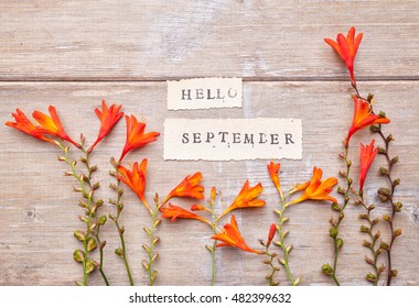 HELLO SEPTEMBER printed on retro  paper with crocosmia flowers