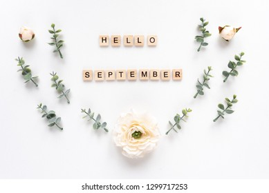 Hello September  words on white marble background