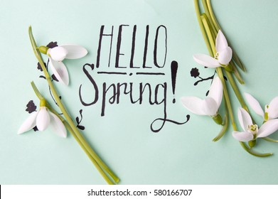 Hello spring calligraphy note with fresh snowdrops