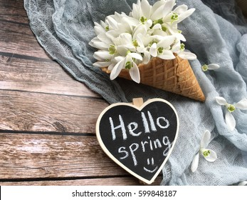 hello spring with snowdrops. hello spring on chalkboard. shabby spring. girl holds a heart chalkboard for spring