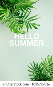 Hello summer postcard. Tropical leaves   on a green background. Top view, flat lay.