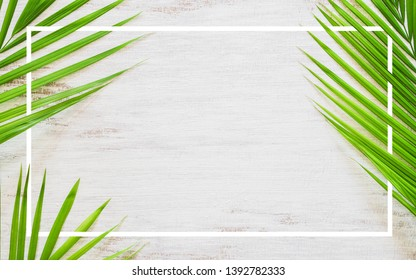Hello summer travel vacation concept flat lay poster background concept. Hello Summer text on white wood background with green nature tropical palm leaf. Top view with copy space.