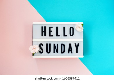 Hello Sunday - text on a display lightbox with flowers carnations on blue and pink background.