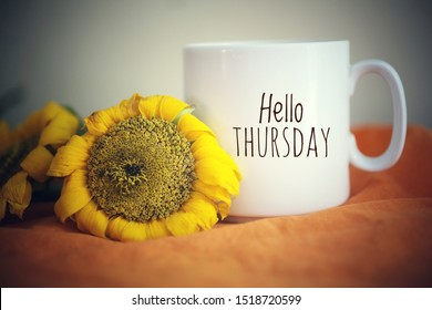 Hello Thursday greeting on a white mug of coffee. With sunflowers and orange color background. Morning coffee concept.