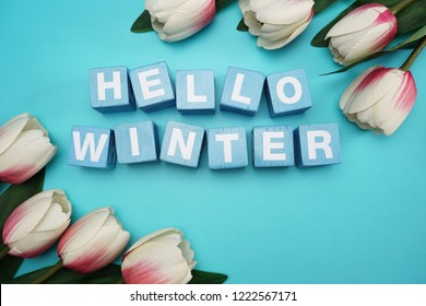 hello winter alphabet letter with tulip flower on blue background
