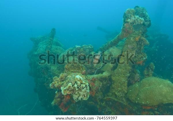 Helmet Wreck near Koror, Palau, Micronesia, Rock Islands, World Heritage Site, Western Pacific