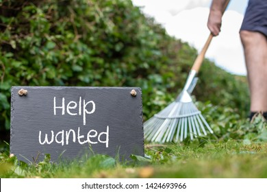 """Help wanted in the garden. Man is raking leaves of a freshly cut hornbeam hedge. The words """"help wanted"""" are written on a slate."""