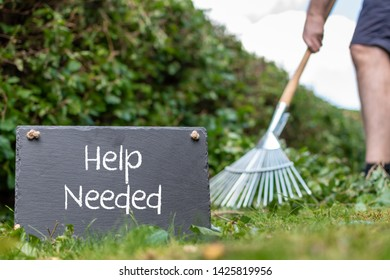 """Help wanted in the garden. Man is raking leaves of a freshly cut hornbeam hedge. The words """"help needed"""" are written on a slate."""