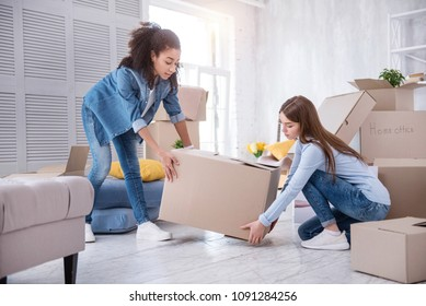 Helping one another. Pretty young girls helping each other and lifting up a heavy box together while packing their belongings