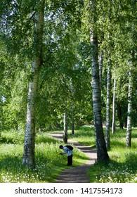 Helsinki, Finland. 6 June 2019 - Finnish green summer forest