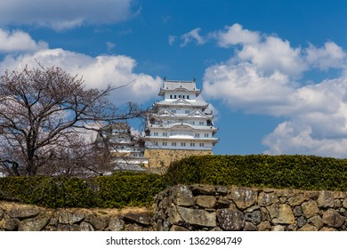 Hemeji castle in spring with pink sakura, Kansai, Japan.