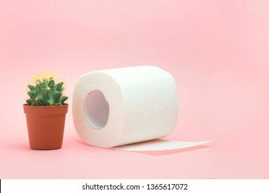 Hemorrhoid, constipation treatment health problems. Toilet paper an a cactus on the pink background. Hemorrhoid problems