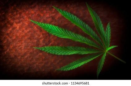 Hemp leaf on old red background, close-up