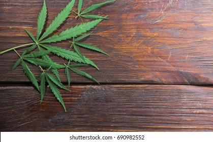 Hemp leaves on a wooden background