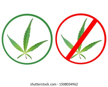 Hemp or marijuana leaf inside a green circle and red circle banned sign isolated on a white background