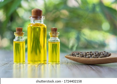 Hemp oil in a glass bottle And the seeds in a wooden spoon The idea of using oil extracted from cannabis to treat diseases. Alternative medicine Herbs extracted from CBD.