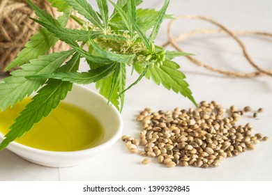 Hemp products concept. Cannabis seed oil, skein and green plant on white background
