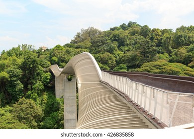 Henderson Waves bridge on Mount Faber rainforest, Singapore