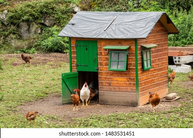 henhouse as a small house or smart henhouse or chicken coop or henhut