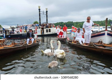 Henley on Thames, UK - July 19 2017:  The Queens Swan Uppers and The Queens Swan Marker David Barber arrive at Henley on Thames on the third day of the swan census.