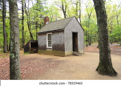 Henry David Thoreau cabin replica in the forest