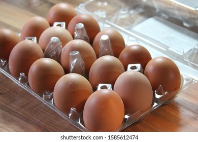 hen's eggs in a transparent tray; 15 brown eggs; eggs