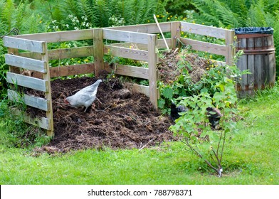 Compost Images Stock Photos Amp Vectors Shutterstock