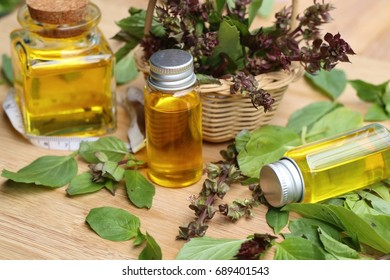 herb basil essential oil