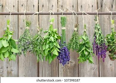 herb bundles hanging on a rod
