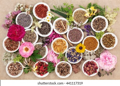 Herb and flower selection used in natural herbal medicine over hemp paper background.