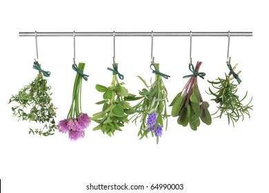 Herb leaf and flower  bunches of thyme, chives, oregano, lavender, sage and rosemary hanging and drying on a stainless steel pole, isolated over white background.