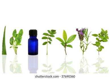 Herb leaf and flower selection with an aromatherapy essential oil glass bottle, over white background with reflection.