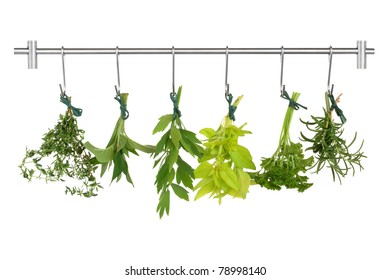 Herb leaf sprigs drying on a stainless steel rack, thyme, bergamot, lovage, golden marjoram, parsley and rosemary, isolated over white background.