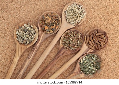 Herb selection for alternative health remedies in olive wood spoons over cork background. Elecampagne, buckthorn, ginseng, red clover, balm of gilead and meadowsweet, left to right.