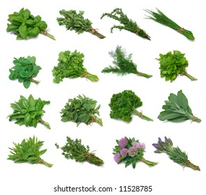 Herb Series Sampler - from top left: Basil, Marjoram, Rosemary, Chives, Mint, Cilantro, Dill, Lemon Balm, Mixed, Oregano, Parsley, Sage, Spearmint, Thyme, Red Clover, Lavender