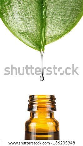Herbal, alternative medicine, water drop falling down from a leaf to the bottle, isolated on white background with copy space