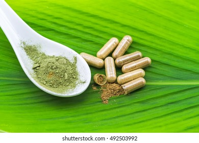 Herbal capsule and powder in white ceramic spoon on green leaf  background.