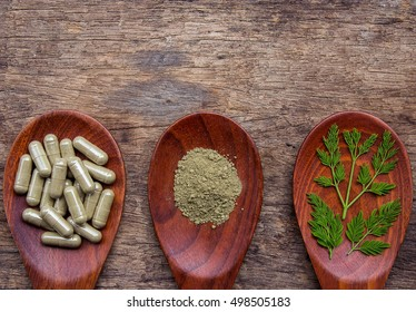 Herbal capsules, herb and powder on wooden spoon for healthy lifestyle
