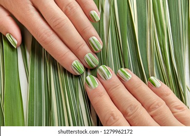 Herbal design on short nails.Striped manicure of nature.Nail art.