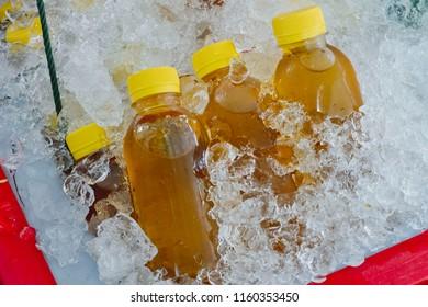 Herbal drink Chrysanthemum tea in plastic bottle on ice