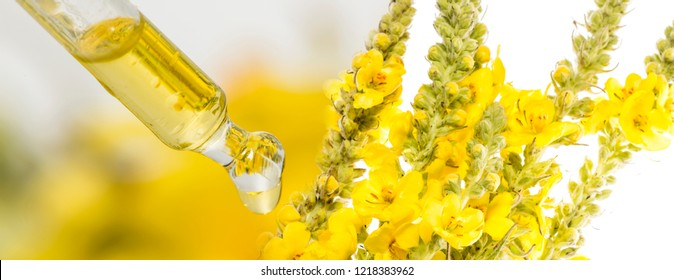 herbal extract close up - macro photo (mullein flower - verbascum)