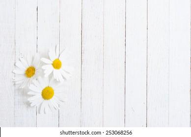 herbal flower on white wood table