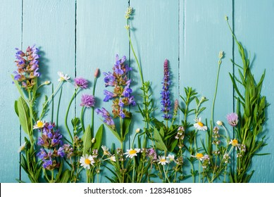 herbal flowers on blue wooden table background
