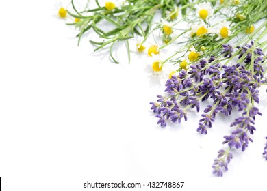 herbal flowers in white background