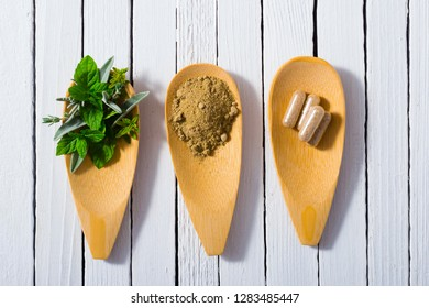 herbal leaves, ground herb powder and medicament pills on bamboo spoons, white wooden table