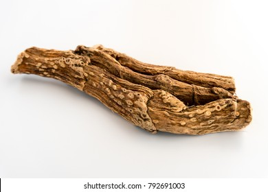 Herbal Medicine : Calamus Root, Vasambu) Isolated  on White Background
