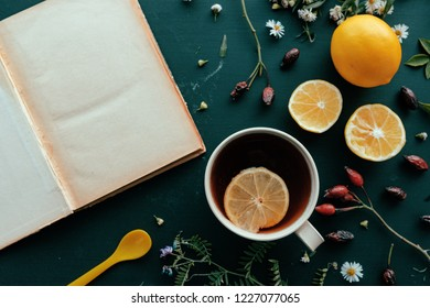 Herbal medicine flat lay top view with cup of hot rosehip tea and slice of lemon