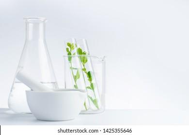 herbal medicine natural organic and scientific glassware research